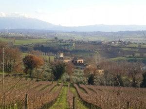 18_001-Montefalco-campagna_panor