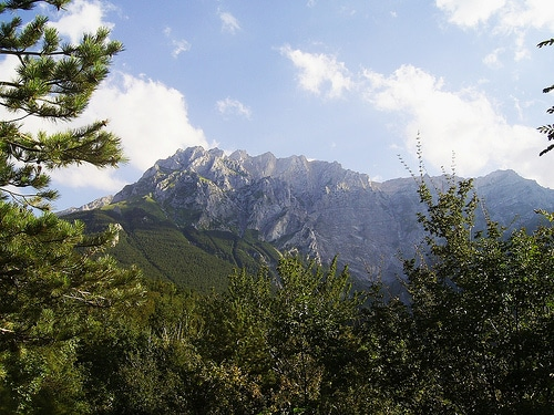 patria del vino Montepulciano d'Abruzzo
