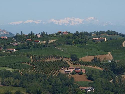 Dogliani comune del vino Dolcetto