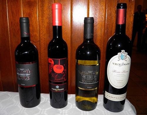 I vini dell'azienda Vignamato