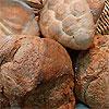 pane di Velletri
