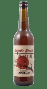 birra alta fermentazione