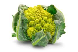 Broccolo-Romano